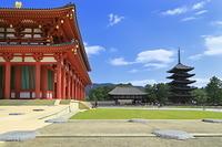 奈良県 奈良市 興福寺