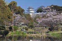 兵庫県 明石城跡 坤櫓