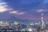 東京都 富士山と東京スカイツリー ライトアップマジックアワー