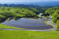 熊本県 扇田