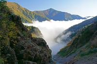 長野県 朝霧の針ノ木谷と爺ケ岳