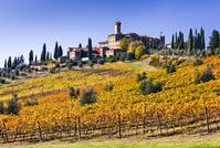 イタリア バンフィ城とブドウ畑