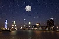 東京都 お台場夜景