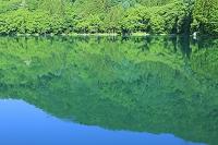 長野県 中綱湖 新緑の湖と湖面の反射