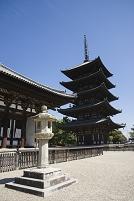 東金堂と興福寺五重塔