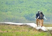 初夏の湿原を歩くカップル