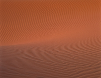 モロッコ サハラ チュビ砂丘 夕映え 風紋