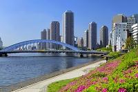 東京都 大川端リバーシティ21と永代橋
