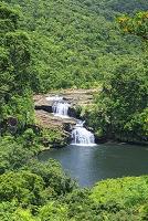 沖縄県 マリユドゥの滝 西表島