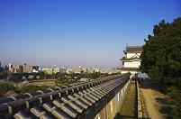 兵庫県 明石城跡の桜