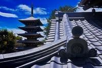 東京都 傳乗寺 五重塔
