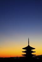 京都府 夕暮れの八坂の塔
