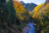 東京都 秋川渓谷 秋