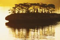 宮城県 朝の松島の逆光の島影