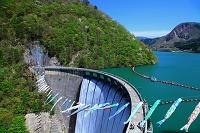 宮城県 大崎市 鳴子ダム こいの滝ぼり
