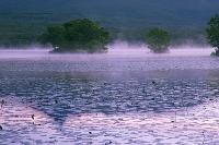 北海道 大沼に映る駒ヶ岳朝景