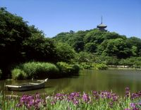 神奈川県 三渓園