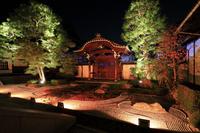 京都府 本法寺 講堂から見る十の庭のライトアップと唐門