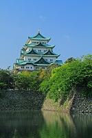 愛知県 内堀と名古屋城