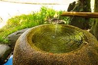 清澄庭園 手水