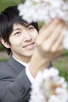 桜に触れ微笑むビジネスマン