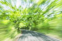 スローシャッターで捉えた新緑木立ちの疾走感