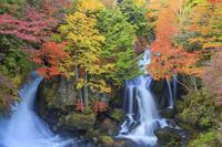 栃木県 竜頭ノ滝 紅葉