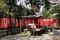 奈良県 春日大社末社の金龍神社(禁狸殿)