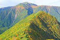長野県 朝の駒津峰から甲斐駒ヶ岳