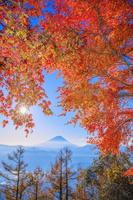 山梨県 櫛形山林道より紅葉と富士山と朝日