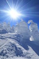 山形県 蔵王の樹氷と青空
