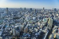 恵比寿から望む渋谷方面の街並み
