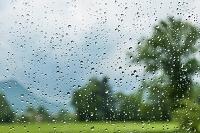 雨雫で濡れた窓