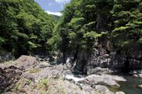 山口県 阿武川流れる夏の長門峡