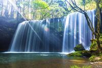 新緑の鍋ヶ滝と光