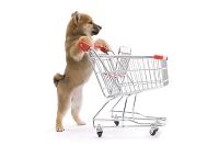 買い物かごを押している柴犬