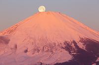 神奈川県 矢倉岳より紅富士と満月