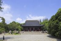 中国 上海 松江 方塔園