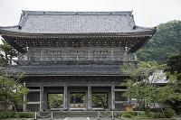 神奈川県 光明寺山門