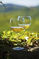 イタリア フリウーリ 白ワイン