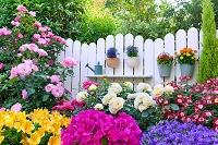 花盛りの庭と柵