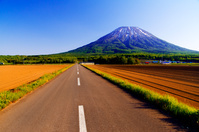 北海道 残雪の羊蹄山と一本の道