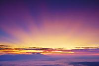 長野県 上田市 美ヶ原高原から望む雲海と浅間山と朝焼けの光芒