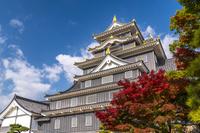 岡山県 秋の岡山城