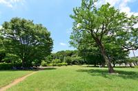 東京都 国分寺市立歴史公園