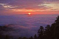 北海道 津別峠の雲海