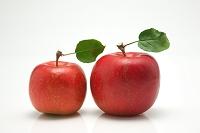 果物 リンゴ