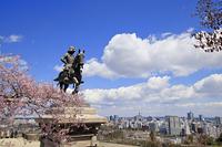 宮城県 伊達政宗騎馬像と桜と仙台市街並み