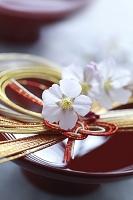 盃の上にのせた祝い飾りと桜の花