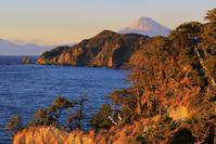 静岡県 黄金崎から望む夕日に染まる富士山と駿河湾